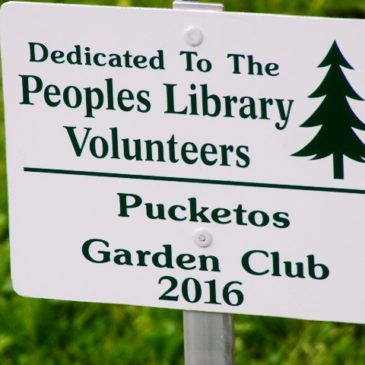 Pucketos Garden Club tree donation in recognition of Peoples Library volunteers